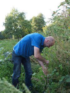 Baumpflanzaktion auf der Permakulturwiese @ Permakulturwiese