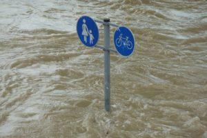 Rundgang - Was tun im Klimawandel? @ Straßenbahnhaltestelle  Borsdorffstraße, Kranichstein
