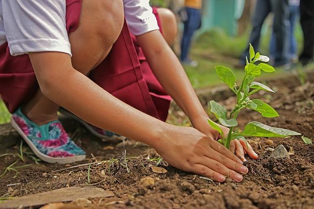 Gartenzeit bei Menschenskinder @ MenschenskinderGarten