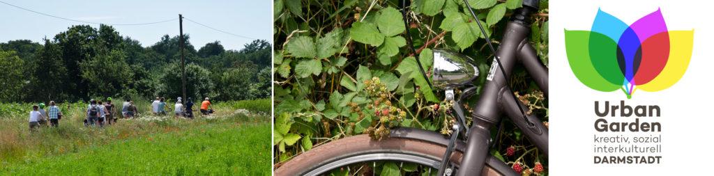 Fahrradtour durch die Gärten der Stadt @ DA Hbf, beim Fahrradparkhaus