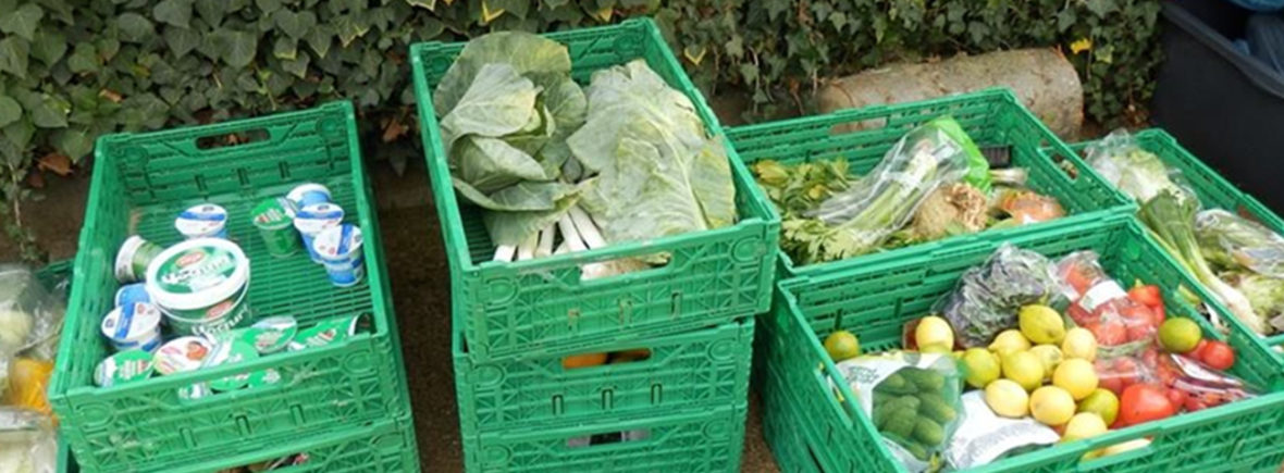Foodsharing-Kisten mit geretteten Lebensmitteln